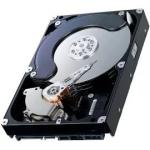 160GB SMART III Ultra ATA/100 IDE hard drive - 7,200 RPM, 3.5-inch form factor, 1.0-inch high