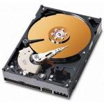 Apple 160GB 7200RPM Ultra ATA/100 3.5-Inch Internal Hard Drive